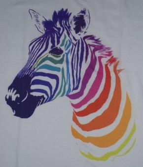mysoti zebra zoom